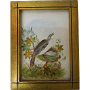 19th Century Theorem Painting On Velvet Of Bird's Nest With Gilt Frame