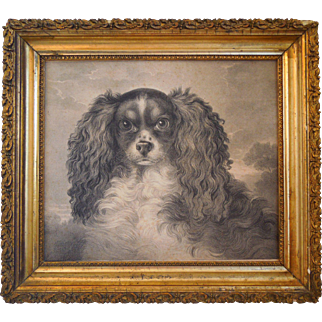 19th Century Engraving Of King Charles Cavalier Spaniel By British Artist, Stephen Taylor (1817-1849)