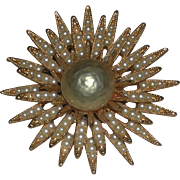 Faux Pearl Seed Pearl Gold Tone Starburst Pin Brooch Capri marked
