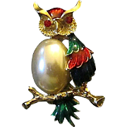 Colorful Enameled Owl On Branch Pin Brooch Faux Pearl Body ~ Free Shipping