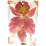 Chunky Reverse Carved Lucite Pink Orchid Pin - c1950s