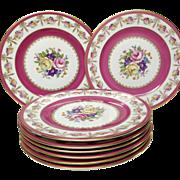 Set (8) Rosenthal Floral Enamelled Service Plates