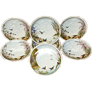 Set (9) Gorgeous Antique CFH Haviland  Limoges Dessert Plates Birds, Flowers
