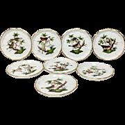 Set (8) Herend Rothschild Bird RO Butter Pats