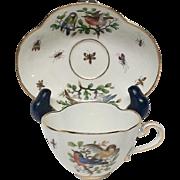 Meissen Quatrefoil Cup & Saucer Birds, Butterflies, Insects