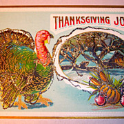 Thanksgiving Postcard, Samson Bros. Turkey, Farm House, Glitter
