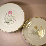 Set (8) Richard Ginori Primavera Salad Plates