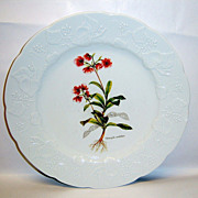 """Dansk Ivy China Accent 9 3/4"""" Luncheon Plate"""