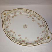 Fabulous Theodore Haviland Schleiger #340 Platter