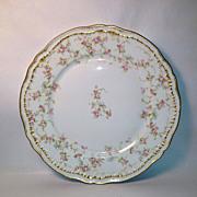 Theodore Haviland Schleiger 161e, Luncheon Plate, Blank 304