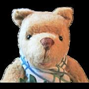R. John Wright Holiday Winnie the Pooh Teddy bear