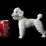 Rosenthal Professor Kramer white Poodle figurine fine porcelain 1950's large