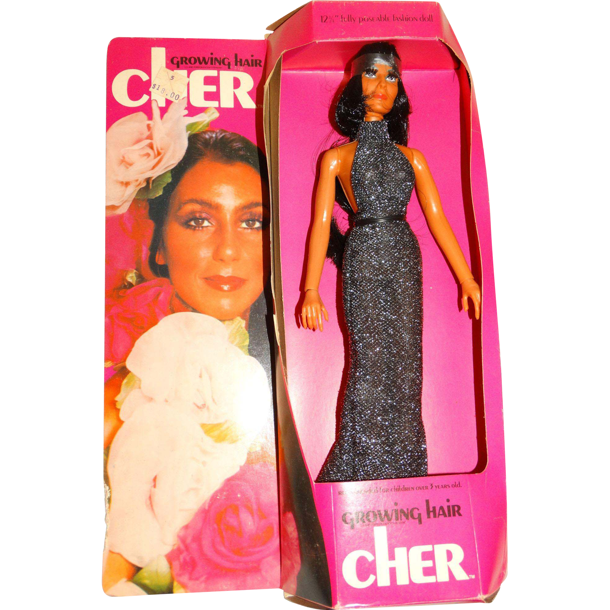 Vintage NRFB Mego 1976 Growing Hair Cher Doll