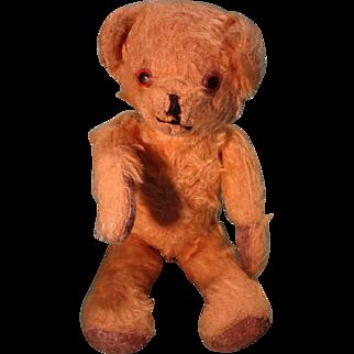 Sweet Little Mohair Bear with Swivel Neck