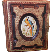 Victorian Photo Album Bound in Leather with Ormolu Clasp