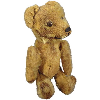 Early Mohair Bear with Long Snout and Swivel Head