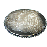 Antique Sterling Fossil Brooch 1860's