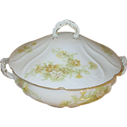 Vintage Porcelain Tureen Royal Austria by O/E.G