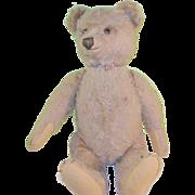 """Vintage Steiff Bear 13"""" Tan Mohair"""