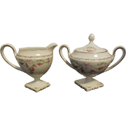 RS Prussia Egg Shell Porcelain Ornate Floral Footed Creamer & Sugar Bowl