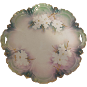 Rare RS Prussia Green Luster White Dogwood Raised Gold Cake Plate