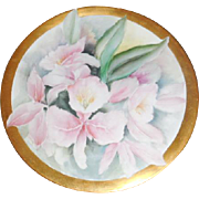 T & V Limoges France Orchid Porcelain Plate
