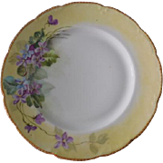 Limoges France Bassett Yellow & Purple Floral Plate