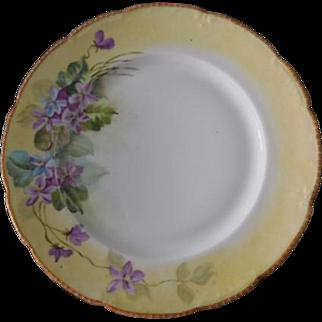 Limoges France Bassett Yellow & Purple Floral Plate