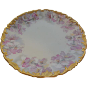 TV Limoges France Hand Painted Floral Plate