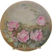 Vintage Artist Signed German Hand Painted Porcelain Floral Plate