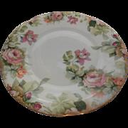 "Hand Painted J & C Porcelain Plate 7.75 """