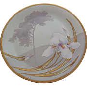 Beautiful Limoges France Hand Painted Plate with Iris, Artist Signed 1899/1913