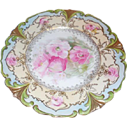 RS Prussia Porcelain Hand Painted Plate 8.75 inches