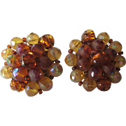 Signed Schiaparelli Cluster Givre and Molded Glass Clip Back Earrings
