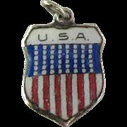 Scarce Vintage USA Enamel 800 Silver Travel Shield Charm