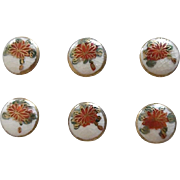 Vintage 1930-40's Satsuma Buttons On The Original Card