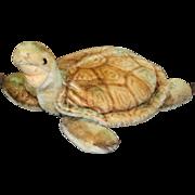 """Steiff """"Slo Turtle"""" Vintage Plush Mohair Toy"""