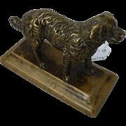 Bronze Golden Retriever