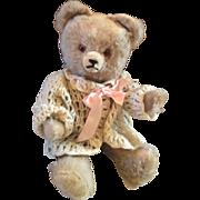 Early Hermann German Bear