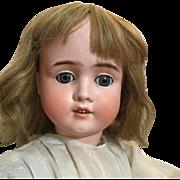 Voila Schoenau & Hoffmeister Bisque Doll