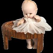 Miniature, Hertwig Baby