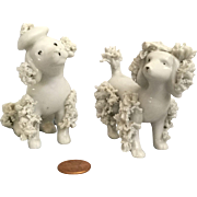 Ginny Type Porcelain Poodles