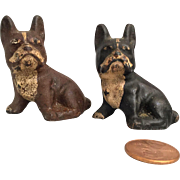 Pair of Painted Cast Iron Pug Dogs/ French Bulldog
