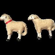 German, Putz Sheep
