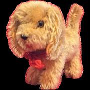 Steiff Small Dog