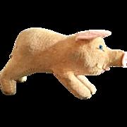 Steiff Miniature Pig