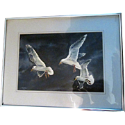"""Gulls"" Vintage Watercolor by Max Gillie 1982"