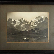 Vintage (c.1912) Photograph S.G. Wehrli, National Geographic photographer, Alps Landscape with Cows