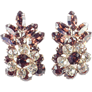 DeLizza & Elster Juliana Rhinestone Climber Earrings