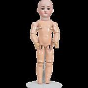 Handwerck 189 Child Doll - 14.5 Inches